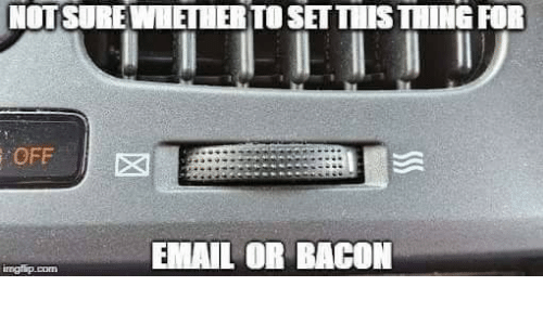 Bacon: NOTSURE WHETHER TO SET THIS THING FOR  OFF  EMAIL OR BACON  irngflip.com