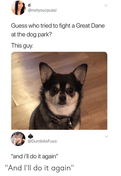 """Dog Park: @notyourpussi  Guess who tried to fight a Great Dane  at the dog park?  This guy  @DumbAsFucc  """"and i'll do it again"""" """"And I'll do it again"""""""