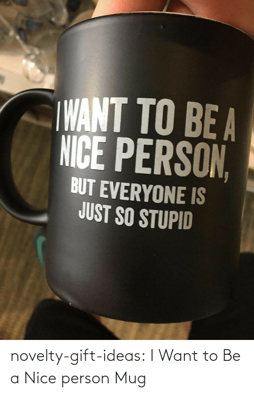 i want to: novelty-gift-ideas:  I Want to Be a Nice person Mug