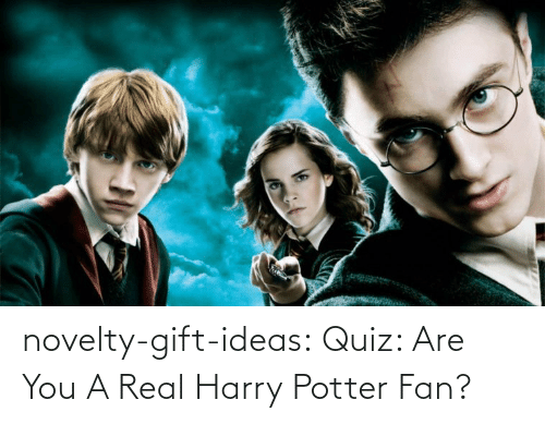potter: novelty-gift-ideas:  Quiz: Are You A Real Harry Potter Fan?