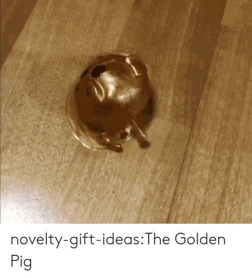 Stress Relief: novelty-gift-ideas:The Golden Pig