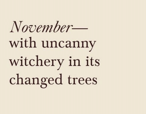 uncanny: November_  with uncanny  witchery in its  changed trees
