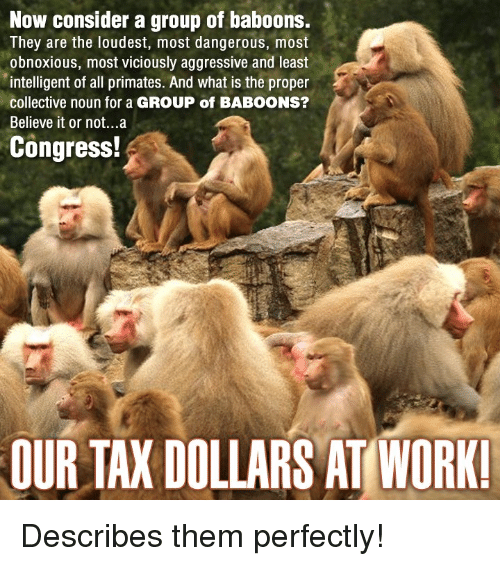 Primatism: Now consider a group of baboons.  They are the loudest, most dangerous, most  obnoxious, most viciously aggressive and least  intelligent of all primates. And what is the proper  collective noun for a GROUP of BABOONS?  Believe it or not...a  Congress!  OURTAXDOLLARS AT WORK! Describes them perfectly!