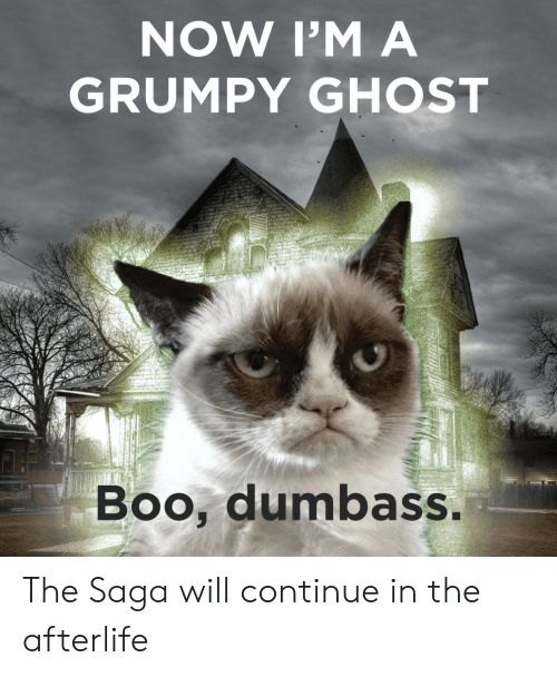 grumpy: NOW I'M A  GRUMPY GHOST  Boo, dumbass The Saga will continue in the afterlife