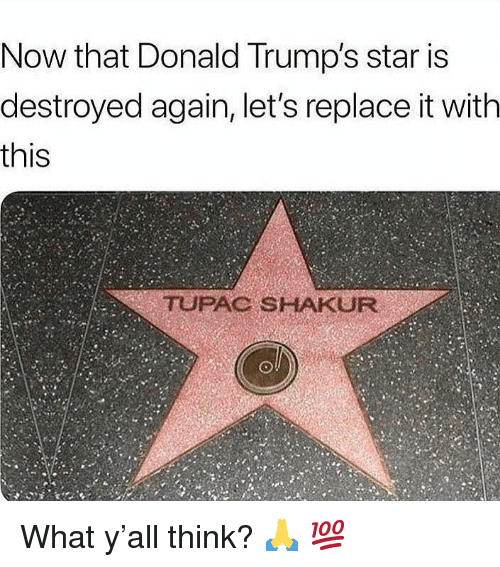 Tupac: Now that Donald Trump's star is  destroyed again, let's replace it with  this  TUPAC SHAKUR What y'all think? 🙏 💯