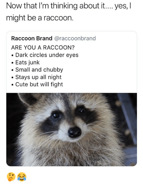 dark circles: Now that I'm thinking about it.... yes, l  might be a raccoon.  Raccoon Brand @raccoonbrand  ARE YOU A RACCOON?  . Dark circles under eyes  . Eats junk  . Small and chubby  . Stays up all night  Cute but will fight 🤔😂