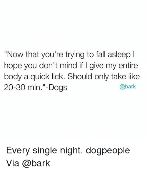 """every single night: """"Now that you're trying to fall asleep l  hope you don't mind if I give my entire  body a quick lick. Should only take like  @bark  20-30 min.""""- Dogs Every single night. dogpeople Via @bark"""