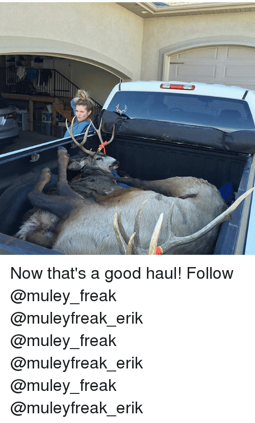 Memes, 🤖, and Freaks: Now that's a good haul! Follow @muley_freak @muleyfreak_erik @muley_freak @muleyfreak_erik @muley_freak @muleyfreak_erik