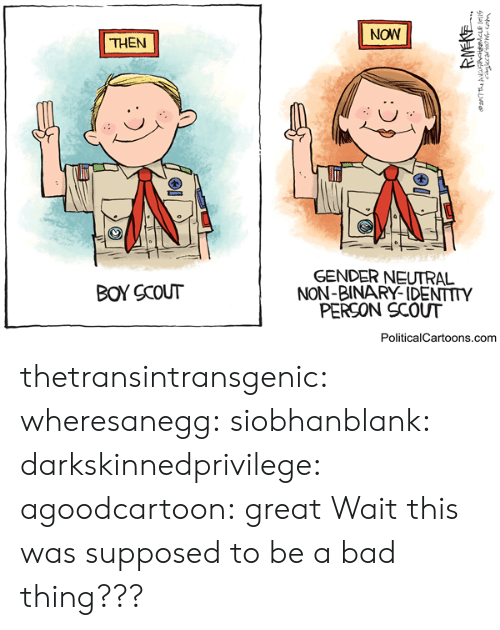 Bad, Target, and Tumblr: NOW  THEN  GENDER NEUTRAL  NON-BINARY-IDENTITY  PERSON SCOUT  BOY SCOUT  PoliticalCartoons.com thetransintransgenic:  wheresanegg: siobhanblank:  darkskinnedprivilege:  agoodcartoon:  great  Wait this was supposed to be a bad thing???