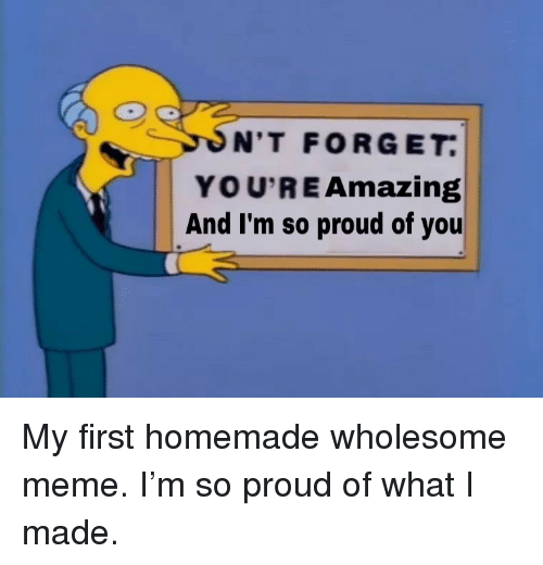 Meme, Amazing, and Proud: N'T FORGET  YOU'RE Amazing  And I'm so proud of you <p>My first homemade wholesome meme. I'm so proud of what I made.</p>