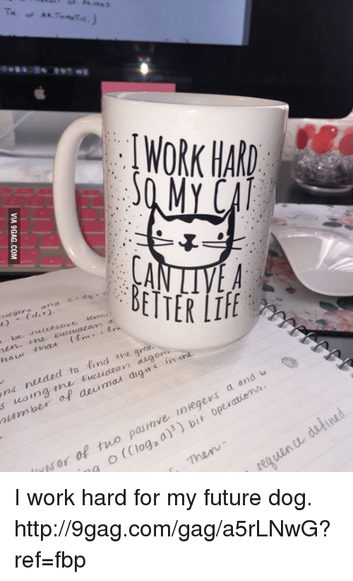 integer: number  of deuimau dig on  t  'n g  find the an  e  to WORK HARO  MY CAI  b  and  integers a pasinve of two or (Clog o detined I work hard for my future dog. http://9gag.com/gag/a5rLNwG?ref=fbp