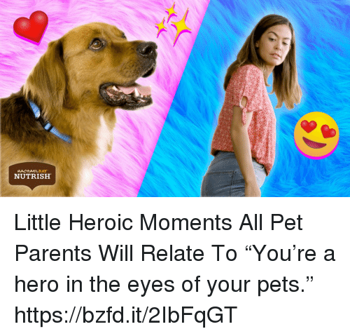 "Memes, Parents, and Pets: NUTRISH Little Heroic Moments All Pet Parents Will Relate To  ""You're a hero in the eyes of your pets.""  https://bzfd.it/2IbFqGT"