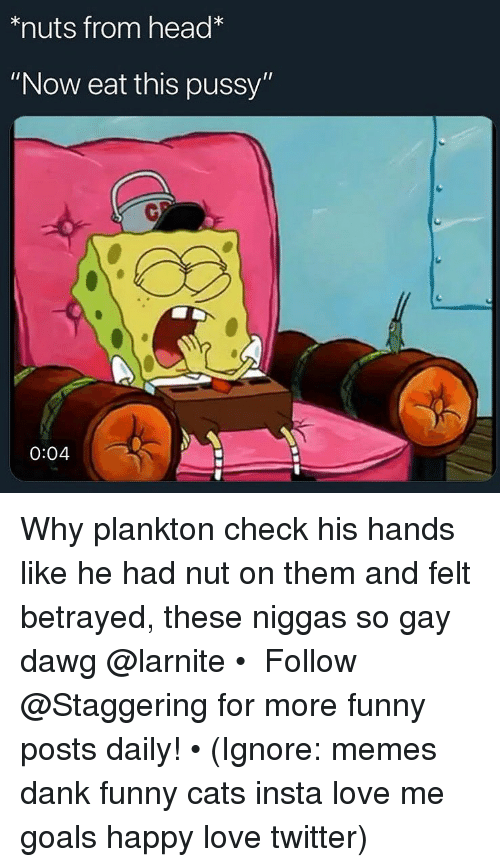 """Cats, Dank, and Funny: *nuts from head*  """"Now eat this pussy""""  0  0:04 Why plankton check his hands like he had nut on them and felt betrayed, these niggas so gay dawg @larnite • ➫➫➫ Follow @Staggering for more funny posts daily! • (Ignore: memes dank funny cats insta love me goals happy love twitter)"""