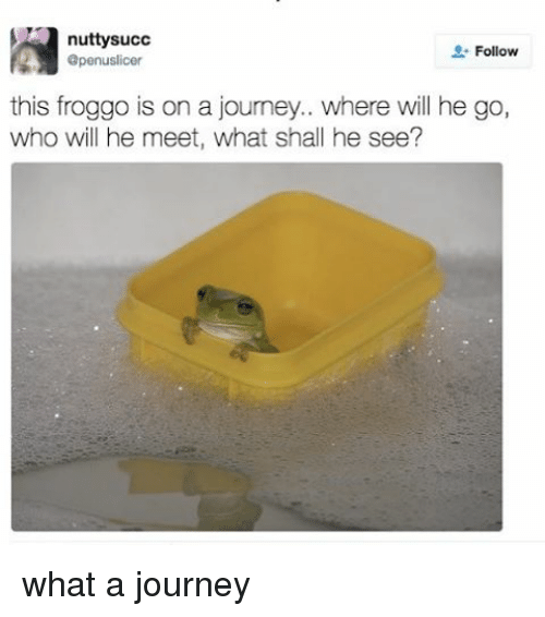 Journey, Relatable, and Succ: nutty succ  Follow  apenuslicer  this froggo is on a journey.. where will he go,  who will he meet, what shall he see? what a journey