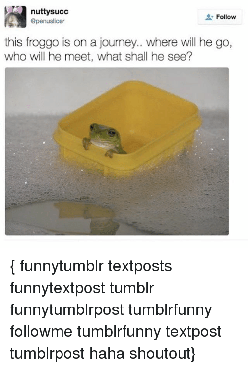 Journey, Memes, and Tumblr: nutty succ  Follow  @penuslicer  this froggo is on a journey.. where will he go,  who will he meet, what shall he see? { funnytumblr textposts funnytextpost tumblr funnytumblrpost tumblrfunny followme tumblrfunny textpost tumblrpost haha shoutout}