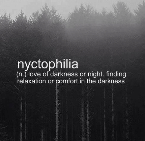 the darkness: nyctophilia  (n.) love of darkness or night. finding  relaxation or comfort in the darkness