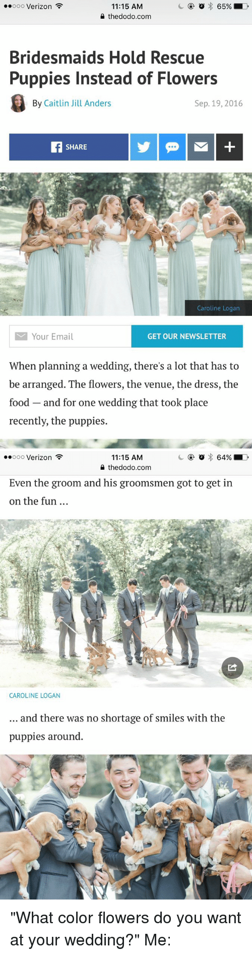 "Groomsmen: o 65%  LD  ooooo Verizon  11:15 AM  the dodo.com  Bridesmaids Hold Rescue  Puppies Instead of Flowers  By Caitlin Jill Anders  Sep. 19, 2016  SHARE  Caroline Logan  M Your Email  GET OUR NEWSLETTER  When planning a wedding, there's a lot that has to  be arranged. The flowers, the venue, the dress, the  food and for one wedding that took place  recently, the puppies.   64% LD  ooooo Verizon  11:15 AM  the dodo.com  Even the groom and his groomsmen got to get in  on the fun  CAROLINE LOGAN  and there was no shortage of smiles with the  puppies around ""What color flowers do you want at your wedding?"" Me:"
