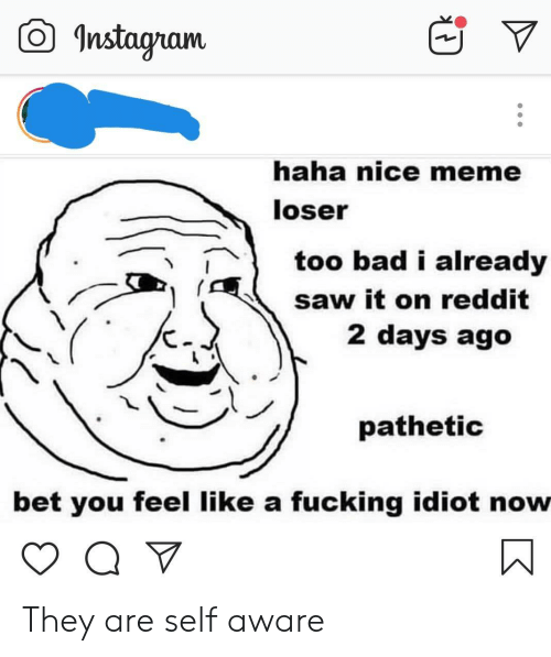 self aware: O Instagram  haha nice meme  loser  too bad i already  saw it on reddit  2 days ago  pathetic  bet you feel like a fucking idiot now They are self aware