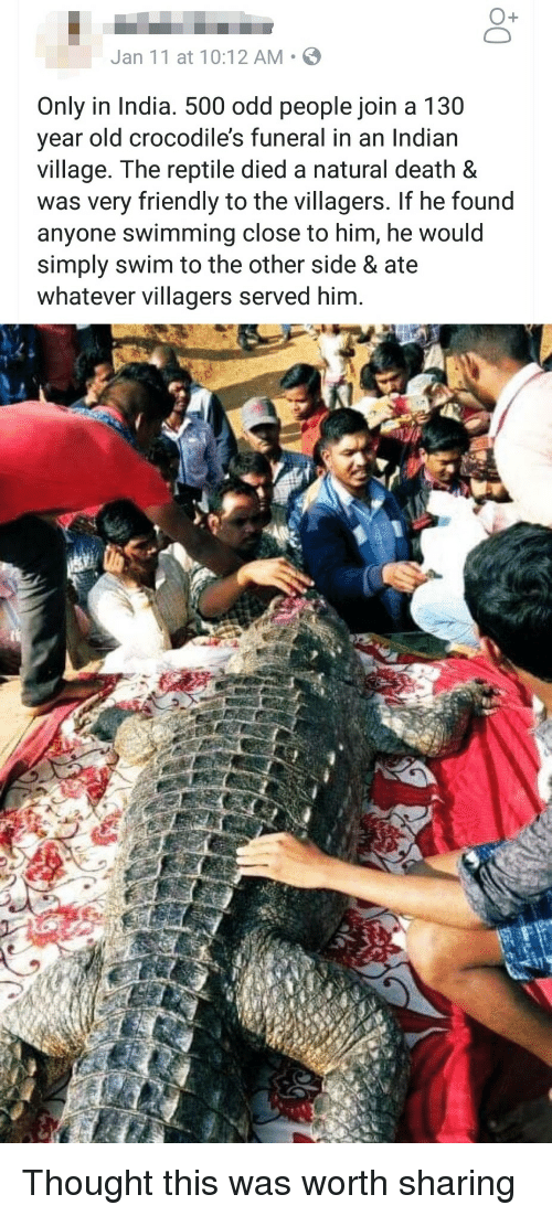 Death, India, and Indian: O+  Jan 11 at 10:12 AM S  Only in India. 500 odd people join a 130  year old crocodile's funeral in an Indian  village. The reptile died a natural death &  was very friendly to the villagers. If he found  anyone swimming close to him, he would  simply swim to the other side & ate  whatever villagers served him. Thought this was worth sharing
