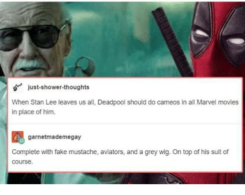 Fake, Memes, and Movies: o just-shower-thoughts  When Stan Lee leaves us all, Deadpool should do cameos in all Marvel movies  in place of him.  garnetmademegay  Complete with fake mustache, aviators, and a grey wig. On top of his suit of  course.
