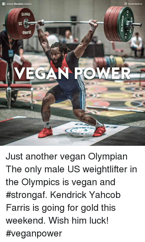 Animals, Memes, and Vegan: O kendrickifarris  animal liberation victoria  VEGAN POWER Just another vegan Olympian   The only male US weightlifter in the Olympics is vegan and #strongaf. Kendrick Yahcob Farris is going for gold this weekend. Wish him luck! #veganpower
