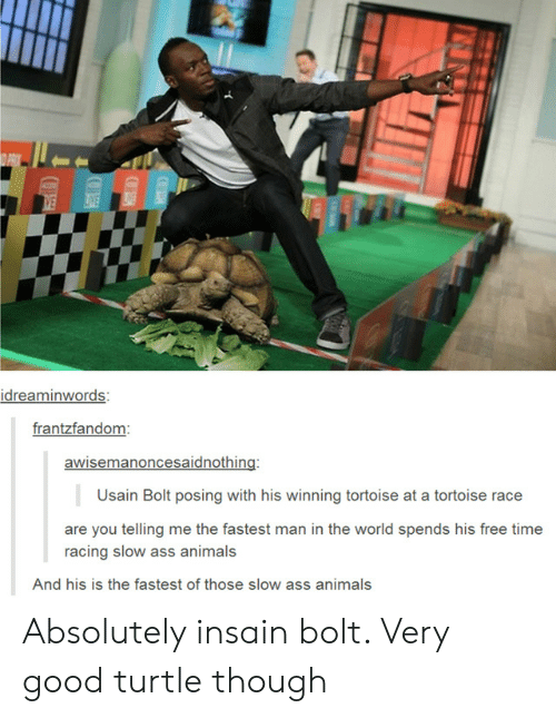 bolt: O PRIY  VE  IVE  idreaminwords:  frantzfandom:  awisemanoncesaidnothing:  Usain Bolt posing with his winning tortoise at a tortoise race  are you telling me the fastest man in the world spends his free time  racing slow ass animals  And his is the fastest of those slow ass animals Absolutely insain bolt. Very good turtle though