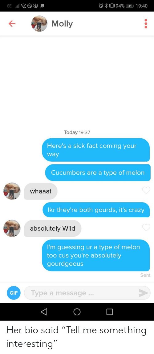 """cus: O094%  19:40  EE  Molly  Today 19:37  Here's a sick fact coming your  way  Cucumbers are a type of melon  whaaat  Ikr they're both gourds, it's crazy  absolutely Wild  I'm guessing ur a type of melon  too cus you're absolutely  gourdgeous  Sent  Type a message...  GIF  O Her bio said """"Tell me something interesting"""""""
