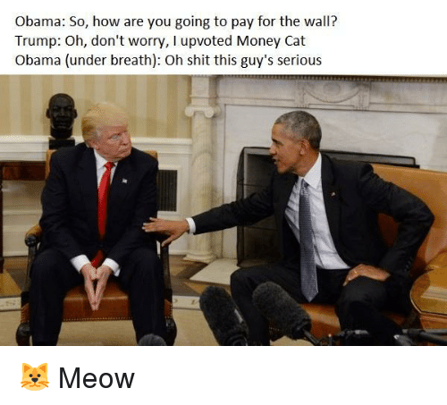 money cat: Obama: So, how are you going to pay for the wall?  Trump: Oh, don't worry, I upvoted Money Cat  Obama (under breath): Oh shit this guy's serious <p>🐱 Meow</p>