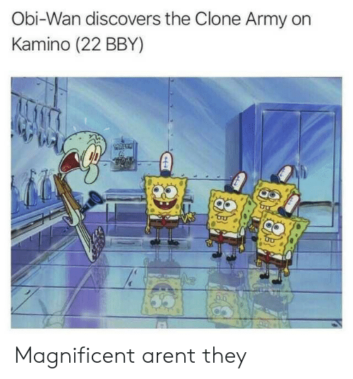 kamino: Obi-Wan discovers the Clone Army on  Kamino (22 BBY) Magnificent arent they