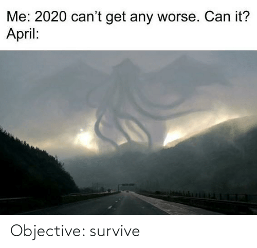 Survive: Objective: survive