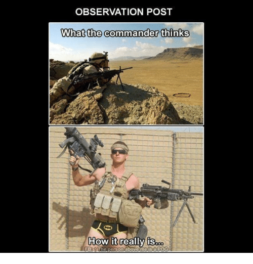 Memes, Pog, and 🤖: OBSERVATION POST  What the commander thinks  How it really is  FB: The  person above me is a POG