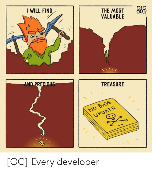 developer: [OC] Every developer