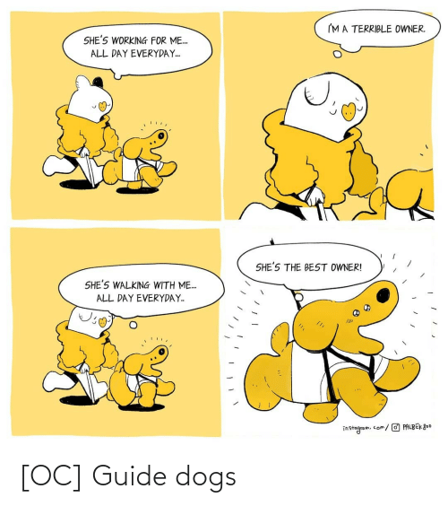 guide: [OC] Guide dogs