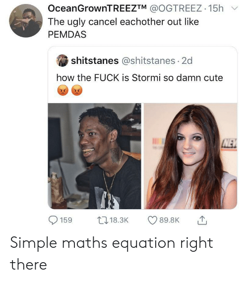How The Fuck: OceanGrownTREEZTM @OGTREEZ 15h  The ugly cancel eachother out like  PEMDAS  shitstanes @shitstanes 2d  how the FUCK is Stormi so damn cute  NEW  L18.3K  89.8K  159 Simple maths equation right there