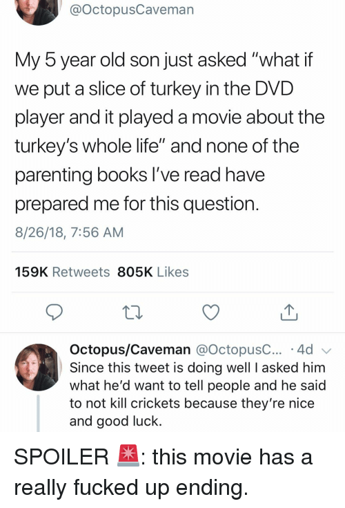 """crickets: @OctopusCaveman  My 5 year old son just asked """"what if  we put a slice of turkey in the DVD  player and it played a movie about the  turkey's whole life"""" and none of the  parenting books l've read have  prepared me for this question  8/26/18, 7:56 AM  159K Retweets 805K Likes  Octopus/Caveman @octopusC 4d  Since this tweet is doing well I asked him  what he'd want to tell people and he said  to not kill crickets because they're nice  and good luck. SPOILER 🚨: this movie has a really fucked up ending."""