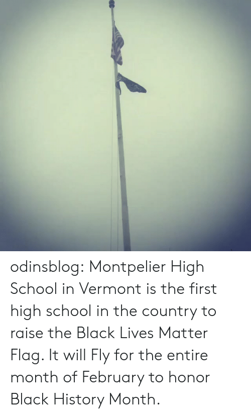 Vermont: odinsblog: Montpelier High School in Vermont is the first high school in the country to raise the Black Lives Matter Flag. It will Fly for the entire month of February to honor Black History Month.