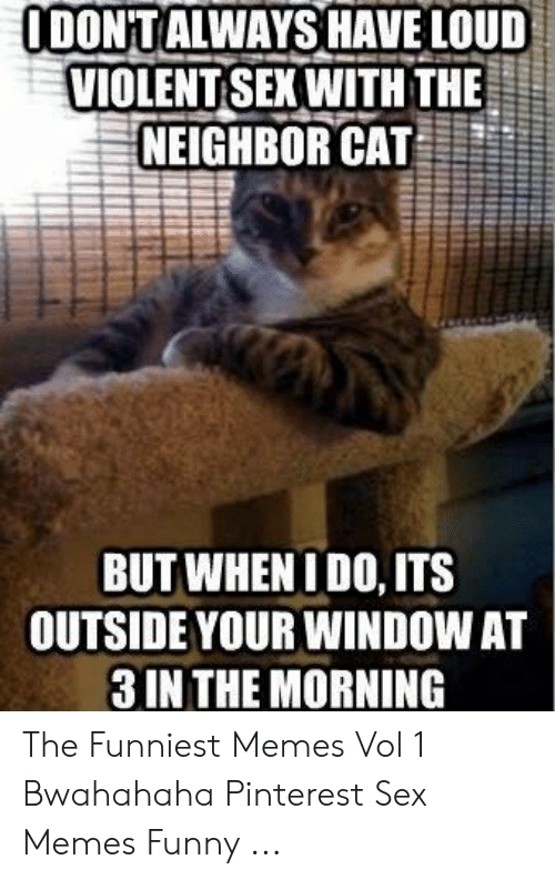 Sex Memes Funny: ODONTALWAYSHAVE LOUD  VIOLENT SEXWITH THE  NEIGHBOR CAT  BUT WHENIDO, ITS  OUTSIDE YOUR WINDOW AT  3 IN THE MORNING The Funniest Memes Vol 1 Bwahahaha Pinterest Sex Memes Funny ...