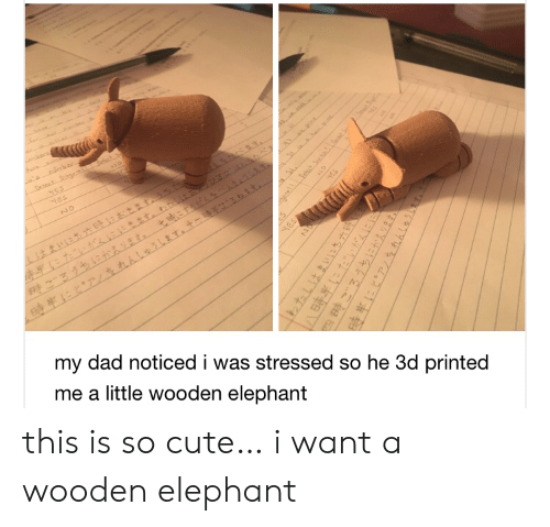Cute, Dad, and Elephant: oecs  t  NES  Nes  NO  my dad noticed i was stressed so he 3d printed  me a little wooden elephant  yES  HES  1わたしはまいにち六  四時ごろうちにかえります。  hhleihT this is so cute… i want a wooden elephant