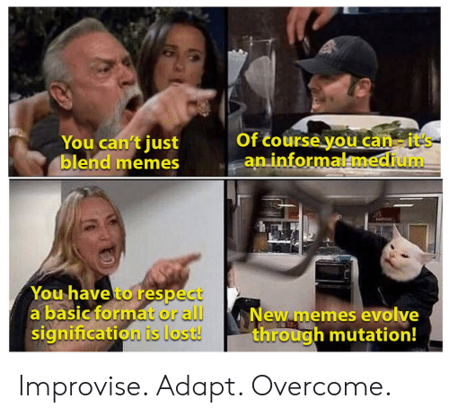 new memes: Of course you can-it's  an informalmedium  You can't just  blend memes  You have to respect  a basic format or all  signification is lost!  New memes evolve  through mutation! Improvise. Adapt. Overcome.