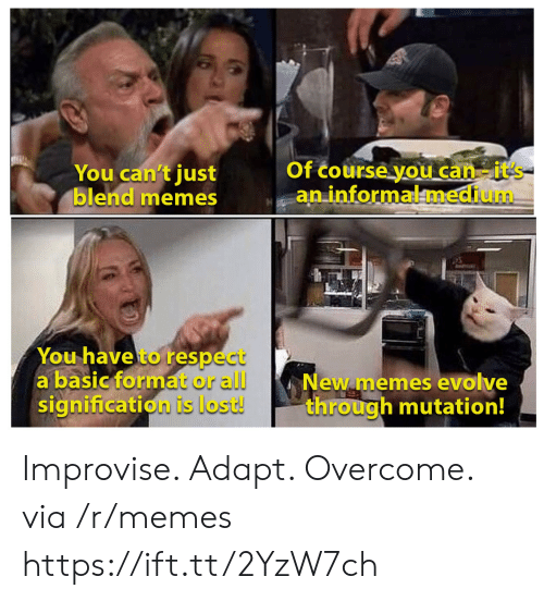 new memes: Of course you can-it's  aninformalmedium  You can't just  blend memes  You have to respect  a basic format or all  signification is lost!  New memes evolve  through mutation! Improvise. Adapt. Overcome. via /r/memes https://ift.tt/2YzW7ch