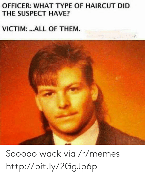 Haircut, Memes, and Http: OFFICER: WHAT TYPE OF HAIRCUT DID  THE SUSPECT HAVE?  VICTIM: ...ALL OF THEM. Sooooo wack via /r/memes http://bit.ly/2GgJp6p