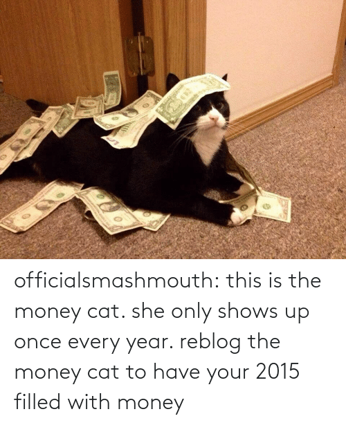 money cat: officialsmashmouth:   this is the money cat. she only shows up once every year. reblog the money cat to have your 2015 filled with money