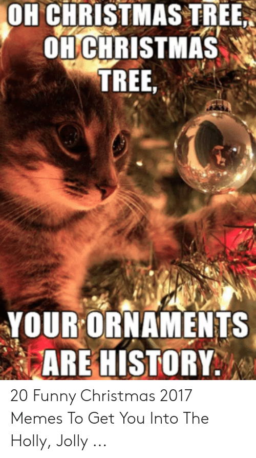 25 Best Memes About Christmas Cookie Meme Christmas