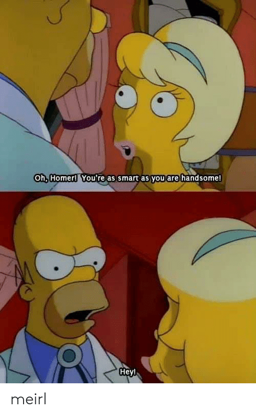 Homer: Oh, Homer! You're as smart as you are handsome!  Heyl meirl