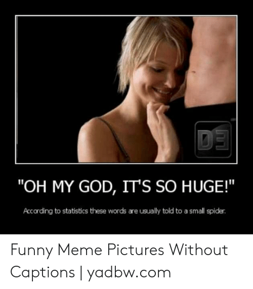 """Funny, God, and Meme: """"OH MY GOD, IT'S SO HUGE!  Accarding to statistics these words are usually told to a small spider Funny Meme Pictures Without Captions 