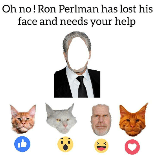 Memes, Lost, and Help: Oh no! Ron Perlman has lost his  face and needs your help