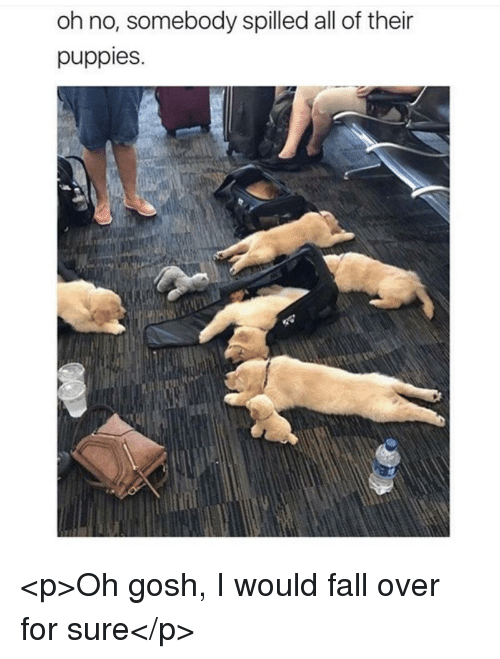 Fall, Puppies, and All: oh no, somebody spilled all of their  puppies. <p>Oh gosh, I would fall over for sure</p>