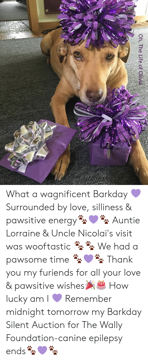 silliness: Oh, The Life of Olivia What a wagnificent Barkday 💜 Surrounded by love, silliness & pawsitive energy🐾💜🐾 Auntie Lorraine & Uncle Nicolai's visit was wooftastic 🐾🐾 We had a pawsome time 🐾💜🐾 Thank you my furiends for all your love & pawsitive wishes🎉🎂 How lucky am I 💜  Remember midnight tomorrow my Barkday Silent Auction for The Wally Foundation-canine epilepsy ends🐾💜🐾