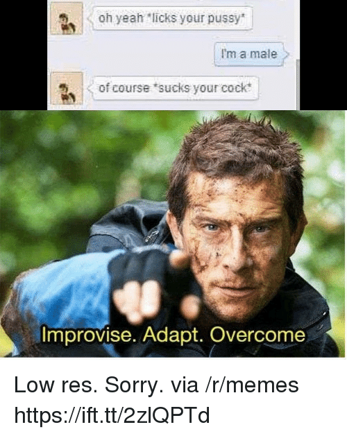 Memes, Pussy, and Sorry: Oh yeah licks your pussy  I'm a male  of course sucks your cock  Improvise. Adapt. Overcome Low res. Sorry. via /r/memes https://ift.tt/2zlQPTd