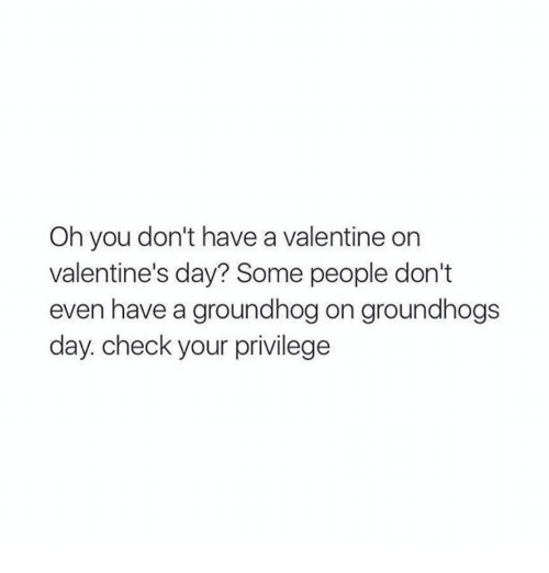 groundhog: Oh you don't have a valentine on  valentine's day? Some people don't  even have a groundhog on groundhogs  day. check your privilege